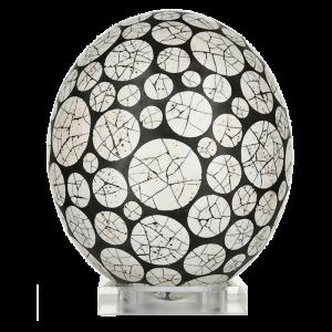 EGR5131-Tankwa-Egg